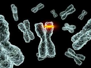 Biologi Mutasi
