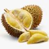 Khasiat Buah Durian untuk Kesehatan