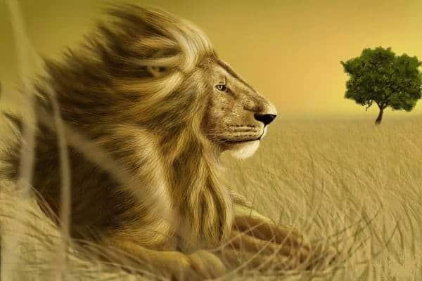 Ramalan Bintang Hari Ini untuk Zodiak Leo