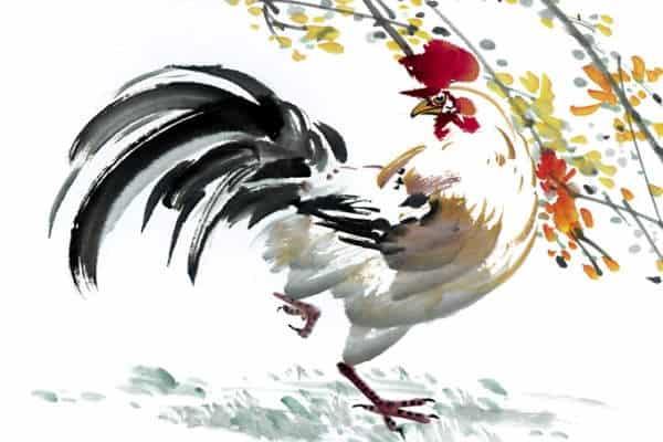 Ramalan shio ayam hari ini
