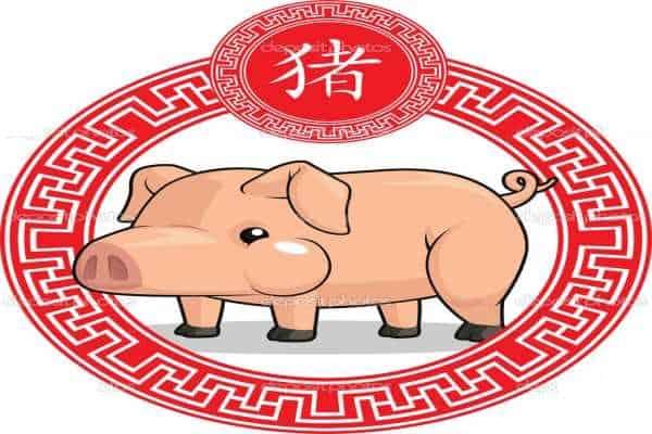 Ramalan shio babi hari ini