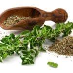 Cara Menyembuhkan Diabetes Dengan Herbal