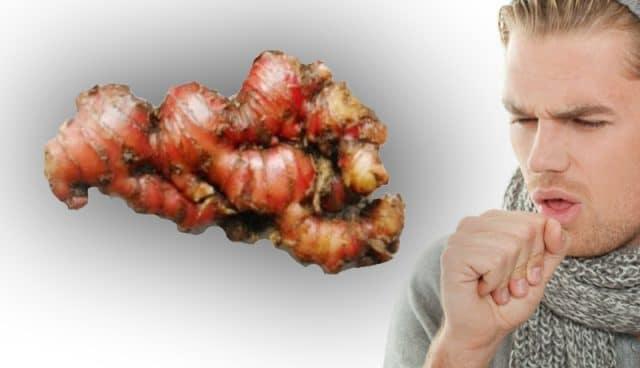jahe merah untuk mengobati batuk secara alami