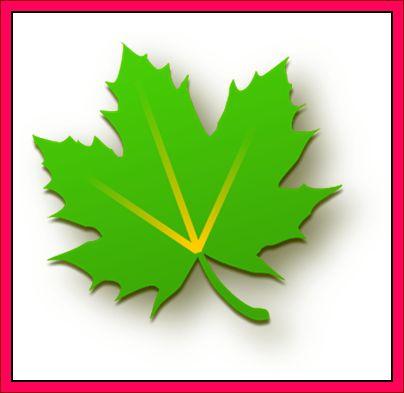 aplikasi greenify
